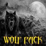 Wolf pack is an all-in-one Kodi addon that includes Movies, TV Shows, Sports, and Live Channels
