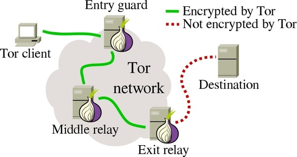 Tor is a browser that allows you access the dark web with the minimum layer of safely